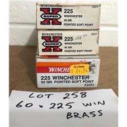 BRASS: 60 X .225 WIN