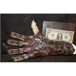PREDATOR SCREEN USED HERO HAND