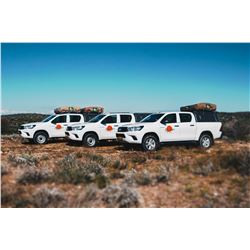 10-day car rental (fully camping equipped, fully insured, 4x4, for 4 people),