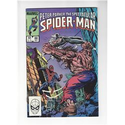 Peter Parker, The Spectacular Spider-Man Issue #88 by Marvel Comics