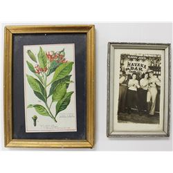 2 FRAMED DECORATIVE ITEMS