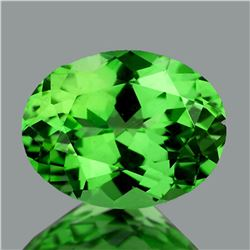 Natural Chrome Green Tsavorite Garnet {VVS}