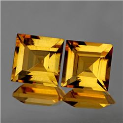 Natural Princess Yellow Citrine Pair - Flawless