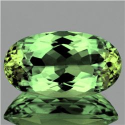 Natural AAA Untreated Green Apatite 9.68 Cts - VVS