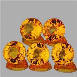 Natural AAA Golden Yellow Sapphire 3.80 MM - VVS