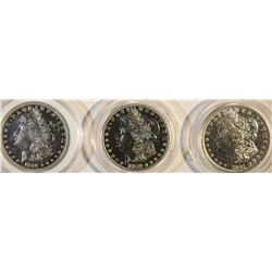 LOT OF 3 MORGAN DOLLARS: