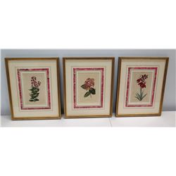 "Qty 3 Framed & Matted Botanical Art 11"" x 14"""