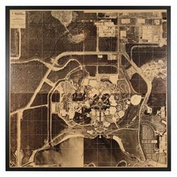 Large Aerial Photograph of Walt Disney World.