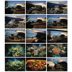Collection of (15) The Living Seas Slides.