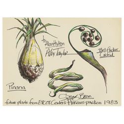 Signed Horizons Pavilion Plants Drawing.