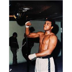 Muhammad Ali Training on Speedbag - Color Print