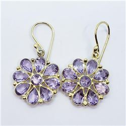 Gold Plated Silver Amethyst(9ct) Earrings, Suggested Retail Value $200 (Estimated Selling Price from