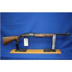 Winchester - 275