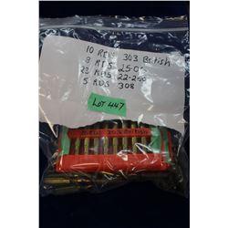 Bag with Rifle Ammunition - 303 British, 25.06, 22/250 & 308