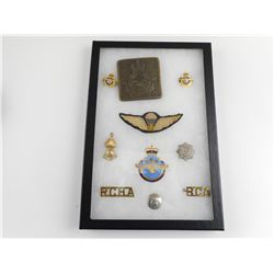 A GLASS CASE OF ASSORTED CANADIAN AIR FORCE AND PARACHUTIST BADGES