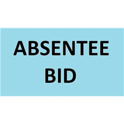 HOW TO PLACE AN ABSENTEE BID
