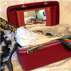 Samsonite Case with Scarves, Belts and Hats