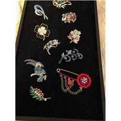 (10) Brooches