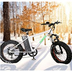 NAKTO BIG WHEEL E-BIKE MINI-CRUISER NEW 36N 10AH - WHITE WITH GREEN