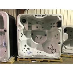 CAL SPA HOT TUB, LES SPAS, STERLING SILVER ARCY, 84X84 SMOKE BASE, 1 PILLOW, 46 STAR FIRE JETS,