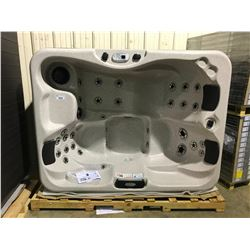 CAL SPA HOT TUB, PATIO PLUS SPAS, SIERRA ARCY, 84X64 SMOKE BASE, 3 PILLOWS, DELUXE SHELL COLOR