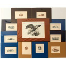 Engraved Printer Proofs, Framing Plates (11)  #571548