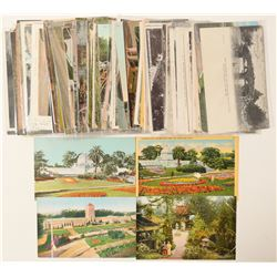 Golden Gate Park Postcard Collection  #103283