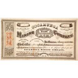 Cocamunga Mining Company Stock  #86021