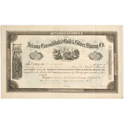 Arizona Consolidated Gold & Silver Mining Company Stock  #81647