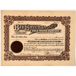 Big Stick Gold Mining Company Stock Certificate  #107740