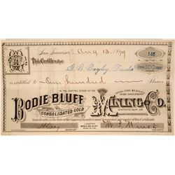 Bodie Bluff Cons. Gold Mining Stock, 1879  #110036