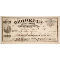 Brooklyn Consolidated Mining Company Stock  #86143