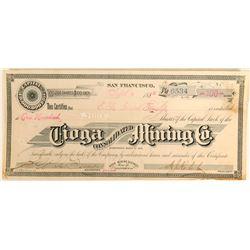Tioga Consolidated Mining Company  #110849