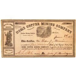 Home Copper Mining Company Stock Certificate  #101496