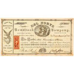 Del Norte Comstock Company Stock Certificate  #100999