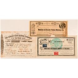Three Tuolumne County Mining Stock Certificates  #100845