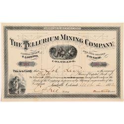 Tellurium Mining Company Stock Certificate  #104330