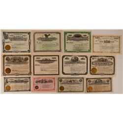 12 Different Leadville Mining Stock Certificates  #107692