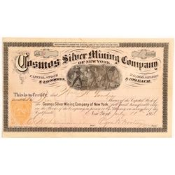 Cosmos Silver Mining Co of NY  #106603