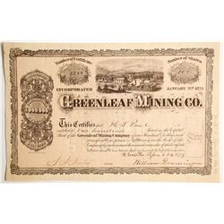 Greenleaf Mining Company Stock  #89429