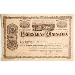 Greenleaf Mining Company Stock  #89429
