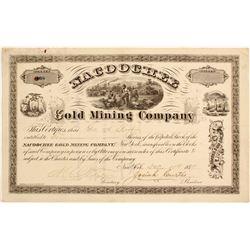 Nacoochee Gold Mining Company Stock  #81960