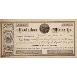 Leviathan Mining Company Stock  #90519