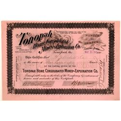 Very Rare Tonopah Home Cons. Mines & Exploration Stock, 1905  #110321