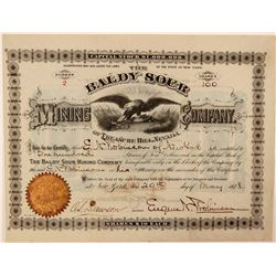 Baldy Sour Mining Company of Treasure Hill, Nevada Stock Certificate  #107733