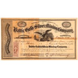 Baltic Gold and Silver MC stock  #108095