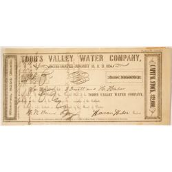 Todd's Valley Water Company Stock  #85241