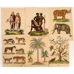 1816 Prints of Animals and Humans  #110182