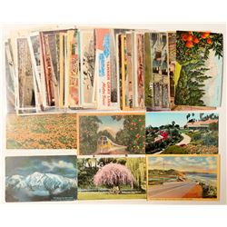 Los Angeles, CA Postcard Collection  #103292