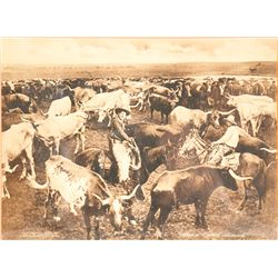 101 Ranch Postcard and Photo Enlargement  #60433